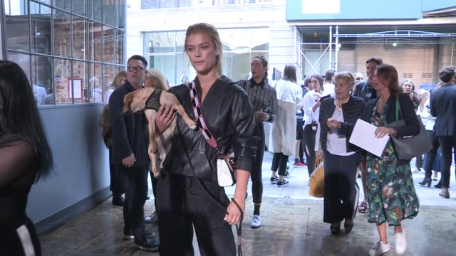 nina agdal and her adorable puppy brandon thomas lee and more front row for the zadig voltaire ready to wear spring summer 2018 fashion show in new... - young animal stock videos and b-roll footage