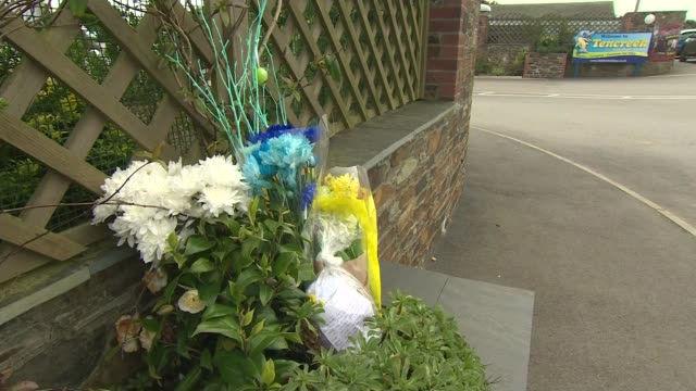 nineyearboy killed by a dog in cornwall named as frankie macritchie england cornwall looe tencreek holiday park ext various floral bouquets laid in... - monumento commemorativo temporaneo video stock e b–roll