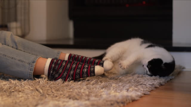 ninja cat will not be defeated by the sock monster! - sock stock videos & royalty-free footage