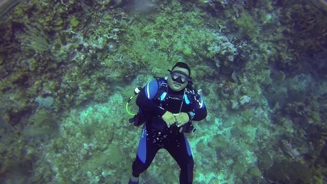 nito, known in the scuba diving world as 'big sexy' is a very popular dive master. with a serious side, he is an excellent teacher and leader and he... - aqualung diving equipment stock videos & royalty-free footage