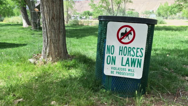 """a """"no horses on lawn; violators will be prosecuted"""" sign hanging on a metal trash can at a public park with fenced trees and grass on a sunny day - hanging sign stock videos and b-roll footage"""