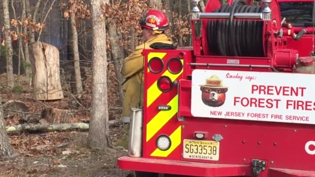 vídeos de stock, filmes e b-roll de no one knows how a brushfire started sometime around 2:30 pm on saturday. new jersey forest fire service was in charge of the scene as a back up... - new age