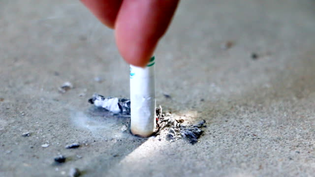 no tobacco closeup of female hand holding broken cigarette on palm, smoking is bad for your health, quit smoking concept, the footage uses, selective focus - cigarette stock videos & royalty-free footage