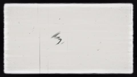 vídeos y material grabado en eventos de stock de ruido en la pantalla de tv analógica vhs - viejo