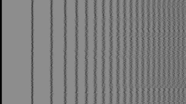 vídeos y material grabado en eventos de stock de ruido en la pantalla de tv analógica vhs - pájaro carpintero escapulario