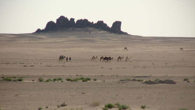 ws nomad crossing african desert / zouerat, tiris zemmour, mauritania - mauritania stock videos & royalty-free footage
