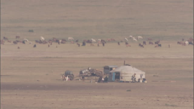 nomadic herder's ger camp on steppe, mongolian steppe - herder stock videos & royalty-free footage