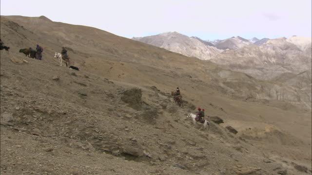 ms tu nomadic old woman travelling on horseback / himalayas, upper dolpo, nepal  - arbeitstier stock-videos und b-roll-filmmaterial