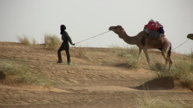 ws nomads walking with camels in sahara desert / zouerat, tiris zemmour, mauritania - モーリタニア点の映像素材/bロール