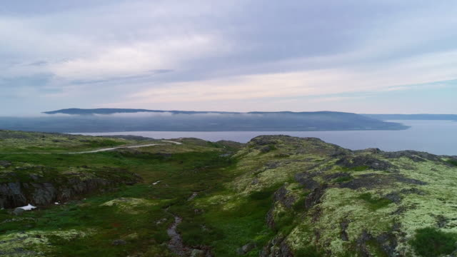 nord summer landscape behind polar circle. - boreal forest stock videos & royalty-free footage