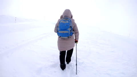 nordic walking at arctic - warm clothing stock videos & royalty-free footage