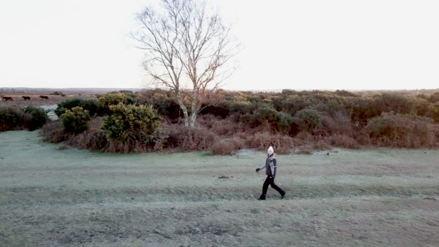 nordic walking - southampton hampshire stock-videos und b-roll-filmmaterial