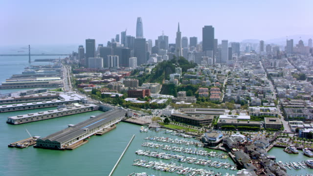 aerial north beach with telegraph hill and the financial district of san francisco in the background - baia di san francisco video stock e b–roll
