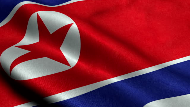 north korea flag - dictator stock videos & royalty-free footage