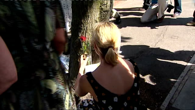 ext brooke kinsella leaving single red rose on ground at spot where her brother died tributes at makeshift shrine mourners at shrine - single rose stock videos & royalty-free footage