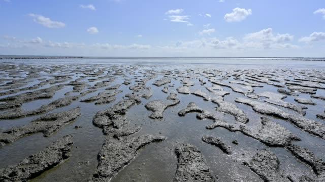 north sea beach with sun at low tide, romo, röm, tonder kommune, syddanmark, southern denmark, denmark - low tide stock videos & royalty-free footage