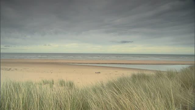 north sea beachfront w/ tide pool marram grass fg pan beach ls beach bordered w/ grass covered sand dunes marram grass fg no people sites of special... - gezeitentümpel stock-videos und b-roll-filmmaterial