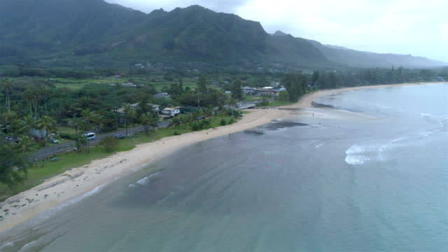 north shore, oahu - honolulu stock videos and b-roll footage
