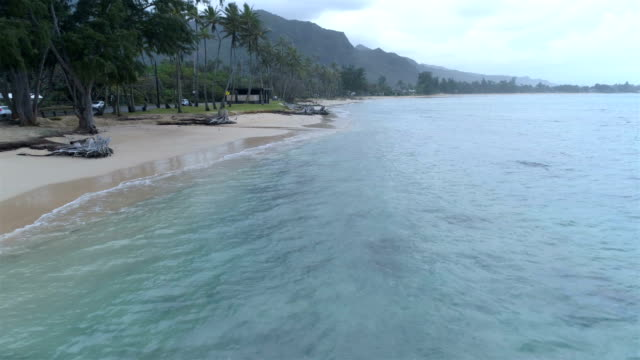 stockvideo's en b-roll-footage met north shore, oahu - oahu