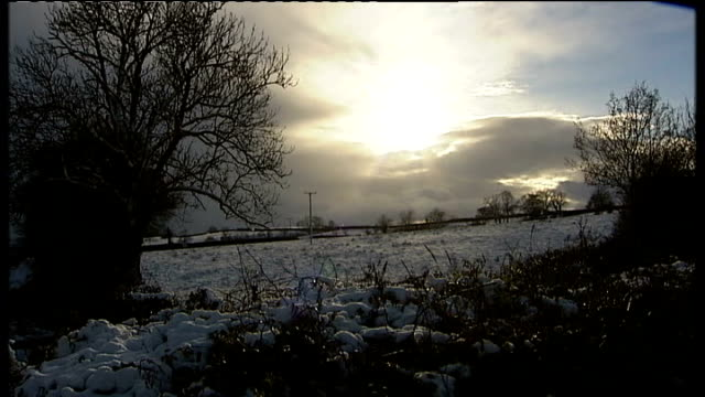 north yorkshire snowcovered field on north york moors sun low in sky shining from behind clouds beyond snowy tree branch and fields in countryside... - north york stock videos & royalty-free footage