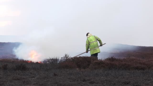 north yorkshire moors heather burning - general views; england: north yorkshire moors: ext fire burning, thick smoke rising and groundskeepers... - stroking stock videos & royalty-free footage