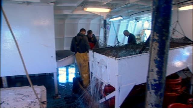 vidéos et rushes de north yorkshire scarborough fishing trawler emulator at harbour side crew member tying rope on deck reporter climbing on board name emulator on side... - water bird