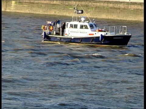 northern bottlenosed whale found swimming in river thames mss whale surfacing for air surrounded by small boats including police boat / gvs london... - surfacing stock videos & royalty-free footage