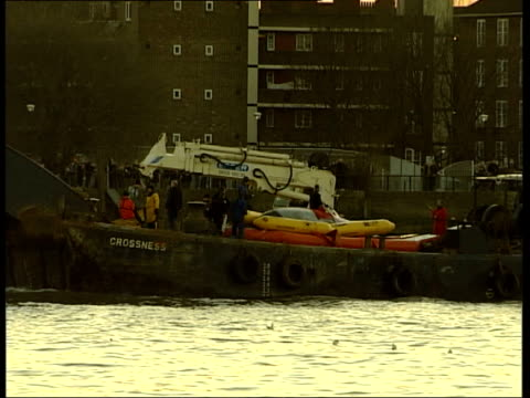 northern bottlenosed whale found swimming in river thames river thames at greenwich gvs old royal naval college building / dusk gvs barge containing... - royal navy college greenwich stock videos & royalty-free footage