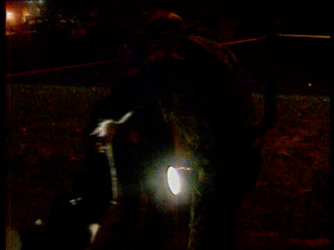 northern ireland's bomb squad itn lib mat belfast seq bomb disposal officers on patrol checking streets as along with torches examining debris on... - disposal stock videos and b-roll footage