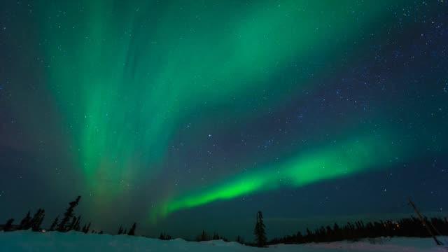 northern lights above alaska - timelapse - アラスカ点の映像素材/bロール
