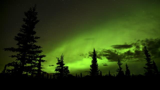 northern lights display. - 30秒以上点の映像素材/bロール