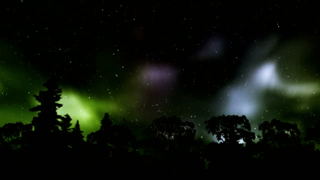 northern lights over the winter forest - time lapse aurora borealis (northern lights) - whitehorse stock videos and b-roll footage