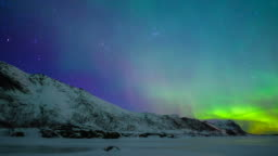 Northern Lights, polar light or Aurora Borealis in the night sky over the Lofoten islands in Norway