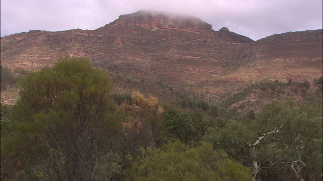 Northern Rim of Wilpena Pound seen from base with clouds over top Zoom in to various shots walking track on rugged hillside VS St Mary's Peak rugged...