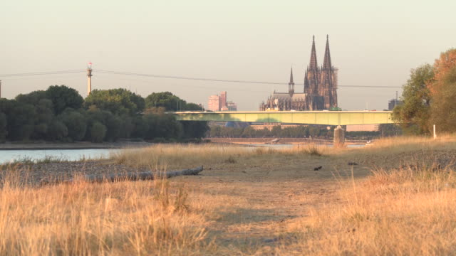 northern view of the big cathedral of cologne - ausgedörrt stock-videos und b-roll-filmmaterial