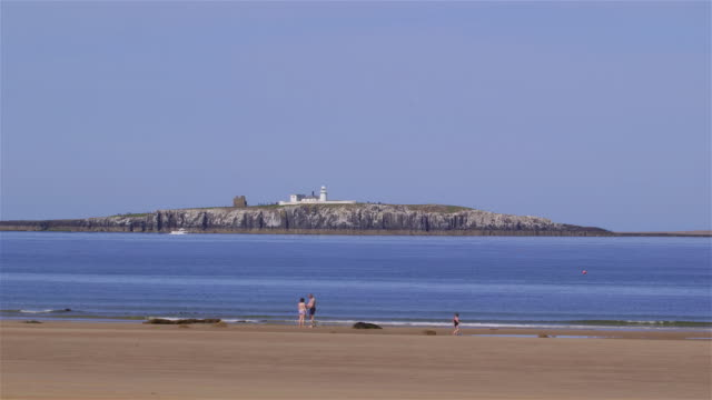 northumberland - northumberland coast stock videos & royalty-free footage