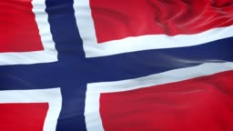 Norway flag waving in the wind with highly detailed fabric texture. Seamless loop