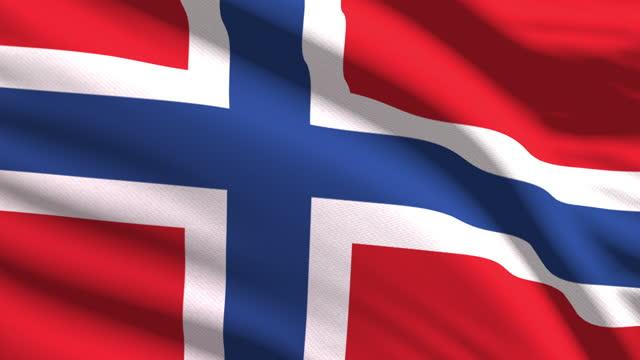 非常に詳細な生地の質感で風に手を振るノルウェーの旗。シームレスループ - 旗棒点の映像素材/bロール