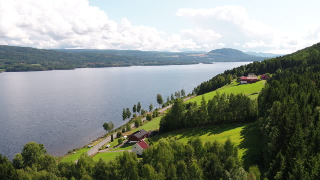 norwegian forest and farmland with fjord in background - farm stock videos & royalty-free footage