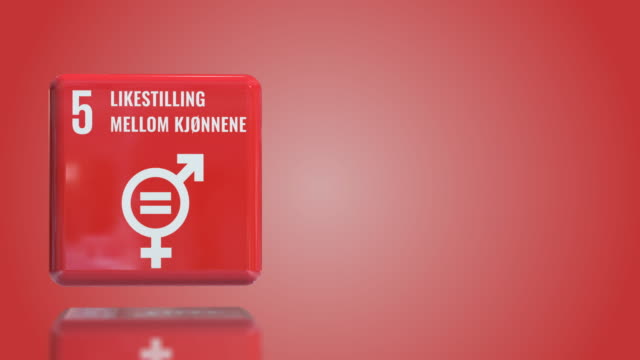 norwegian number 5 gender equality 3d box sustainability goals 2030 with copy space - gender equality stock videos & royalty-free footage