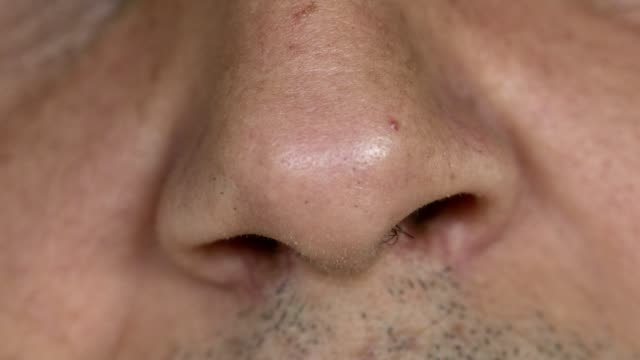 nose smelling - close up - human nose stock videos & royalty-free footage