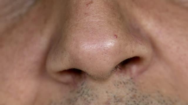 stockvideo's en b-roll-footage met het ruiken van de neus - dicht omhoog - menselijke neus