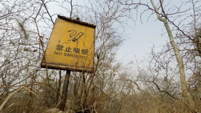 a no-smoking warning board in mountain forest - chinese language stock videos & royalty-free footage