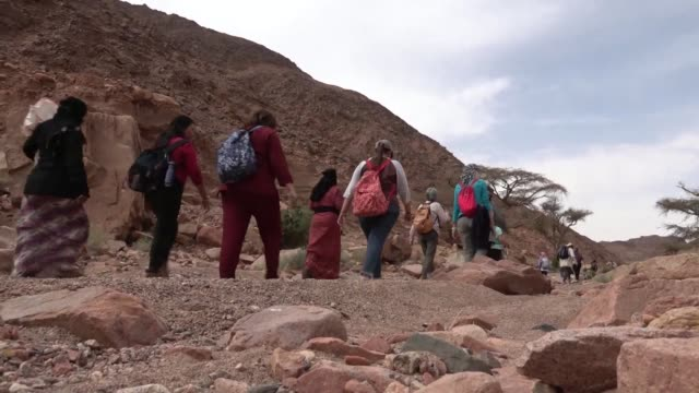 not so long ago the sight of umm yasser clad in a black abaya leading hikers through the intricate trails of the majestic south sinai mountains would... - sinai egitto video stock e b–roll