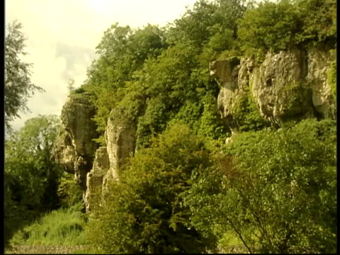 stockvideo's en b-roll-footage met nottinghamshire cresswell crags overlay prehistoric drumming tree branch pull focus entrance to cave int cave cs water dripping from ceiling of cave... - geproduceerd segment