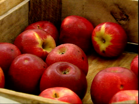 november 20, 2007 jonathan apples displaying at a farmer's market / mt. vernon, virginia, united states - バージニア州マウントヴァーノン点の映像素材/bロール