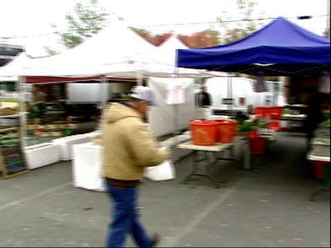 november 20, 2007 people buying and selling food at a farmer's market / mt. vernon, virginia, united states - バージニア州マウントヴァーノン点の映像素材/bロール