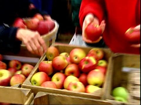 november 20, 2007 shoppers picking out apples at farmer's market / mt. vernon, virginia, united states - バージニア州マウントヴァーノン点の映像素材/bロール