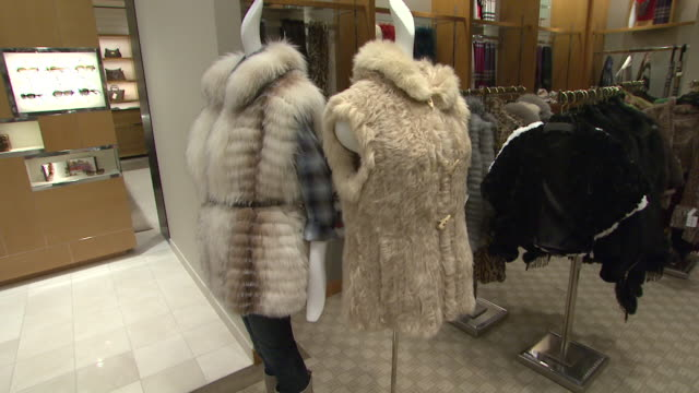 november 27 2009 pov fur coats on display in neiman marcus / united states - neiman marcus stock videos & royalty-free footage