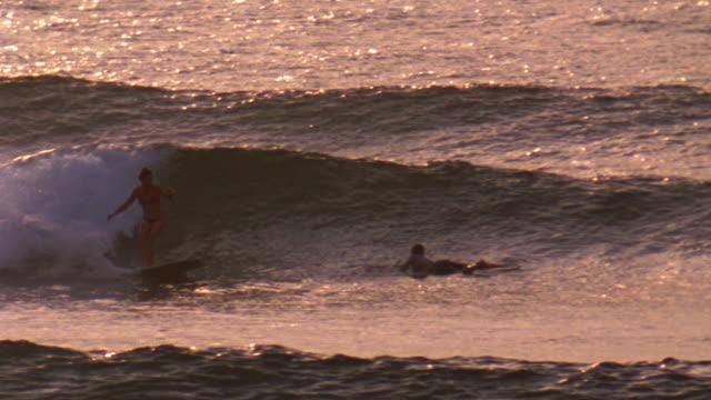 vídeos y material grabado en eventos de stock de november 6 2007 ts a surfer carving a mellow wave on a long board at sunset - surf en longobard